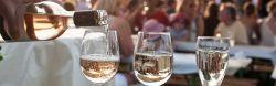 Mainzer Weinmarkt 2020
