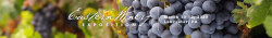 Eastern Winery Exposition 2020
