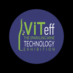 VITeff 2021